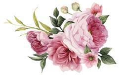 فایل png گل
