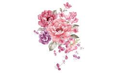 فایل png گل های صورتی 2